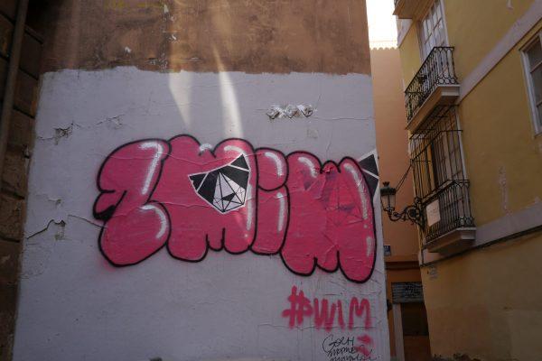 Rencontre avec JANK : dans les coulisses du street-art et du vandalisme