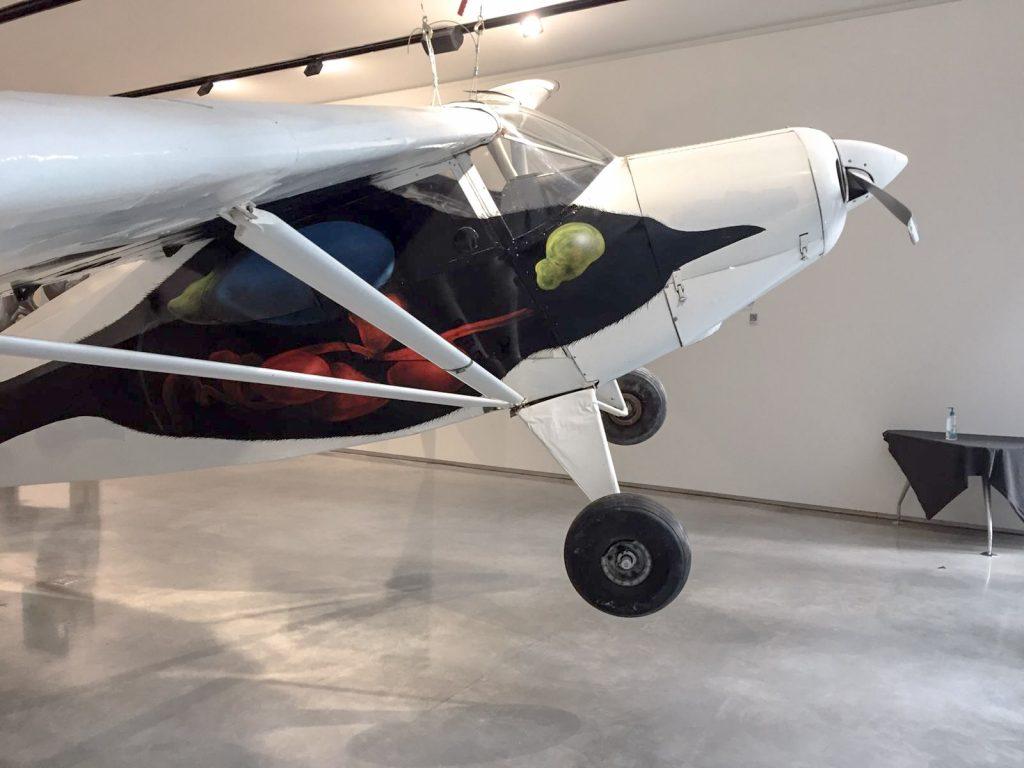 Exposition de ROA à Itinerrance en 2020 : corbeau et ses entrailles peints sur un avion