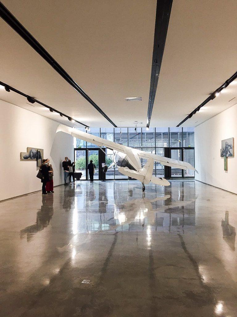 """Avion de tourisme, oeuvre de ROA pour son exposition """"Histoire Naturelle"""" à la galerie Itinerrance, dans le 13ème arrondissement de Paris"""